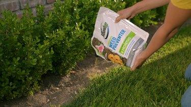 sprinkling weed preventer on grass