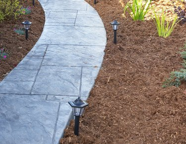 pathway with mulch