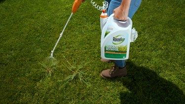 Roundup® for Lawns Crabgrass Destroyer₁