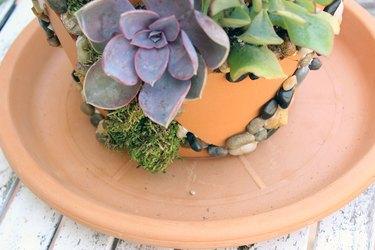 saucer under pot