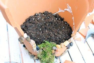 potting soil in pot