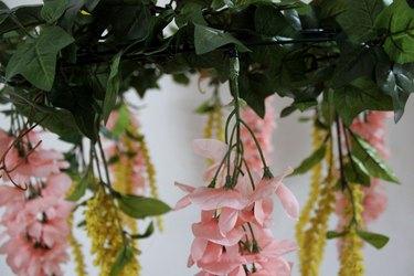 several hanging blooms