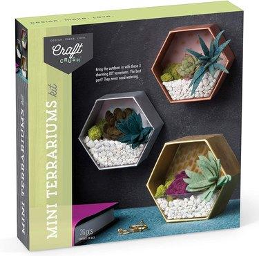 Mini Geometric Terrariums Craft Kit