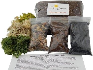 Succulent/Cactus Terrarium Kit