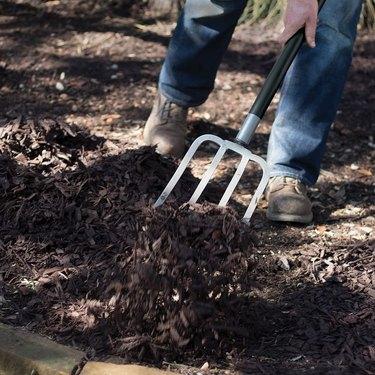 Sturdy garden fork