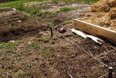 View of a garden in early spring, with a new bed marked out with stakes and twine.