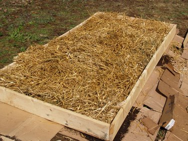 Garden bed covered with straw for the winter.