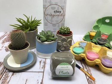 Eco-friendly Clay Kit With Succulent or Cactus