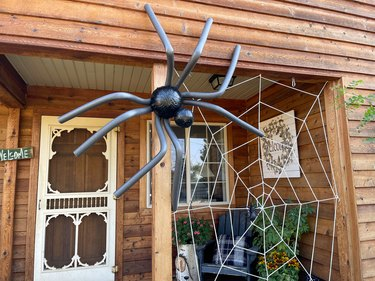 finished giant spider in web