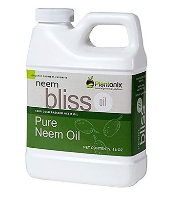 Bliss 100% neem oil concentrate