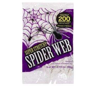 Kangaroos's Stretchy Spider Web