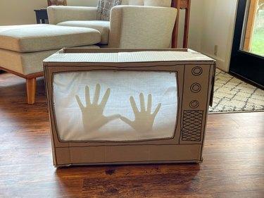 daytime Poltergeist Haunted TV