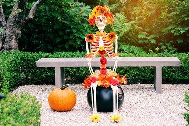 skeleton planter