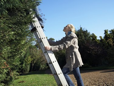 Young woman holding ladder, looking up at man