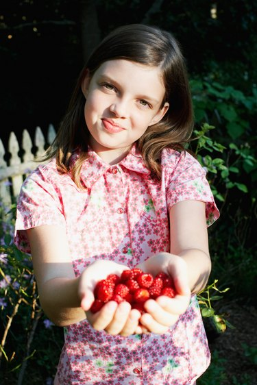 Girl posing with raspberries in cupped hands