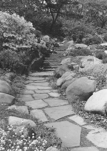 Footpath in rock garden, (B&W)