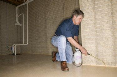 Man spraying crevices