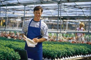 Nursery employee in greenhouse