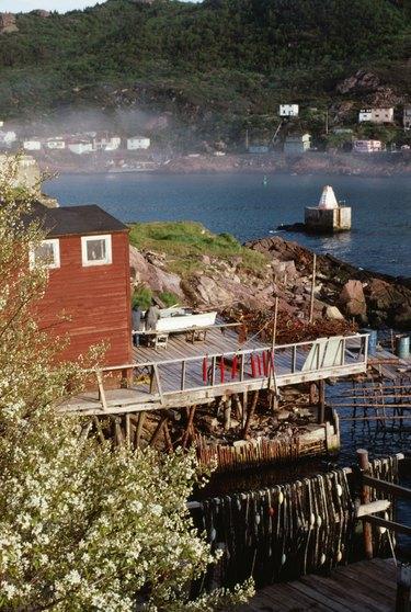 Houses on shore of St John, Newfoundland, Canada
