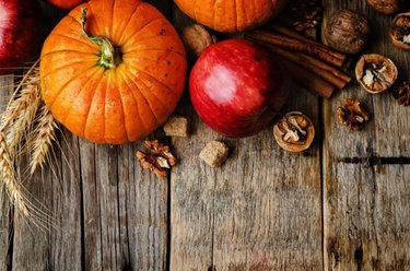 wood background with pumpkin, apples, wheat, honey and nuts. the toning. selective focus