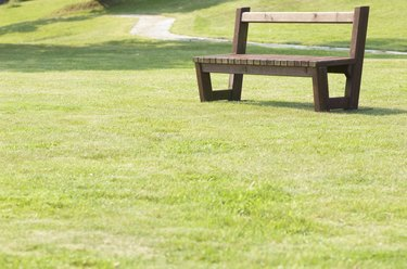 Park lawn and an empty bench