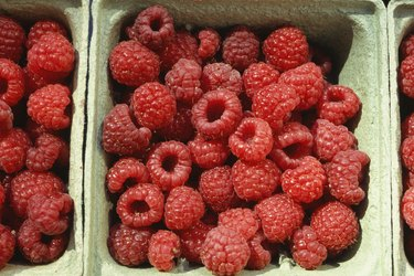 Raspberries in boxes, Chile, (Close-up)