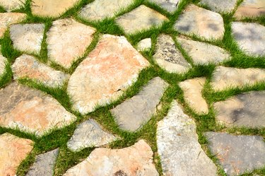 Stone path in green grass garden pattern elevated view on sunny day