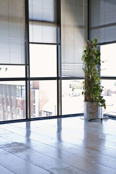 Windows in a corner