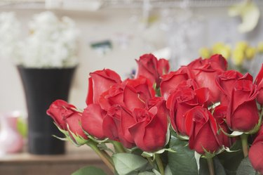 Close-up of a bunch of red roses