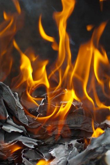 Books in the fire