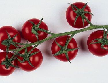 Ripe tomatoes on vine