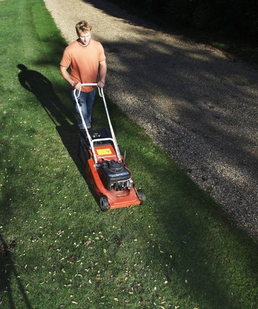 Young man mowing lawn, elevated view