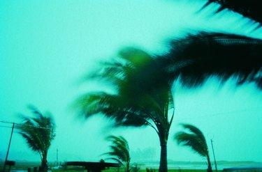 Storm damage,Phuket Island