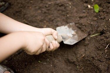 Boy with a shovel digging dirt, Kanagawa Prefecture, Honshu, Japan