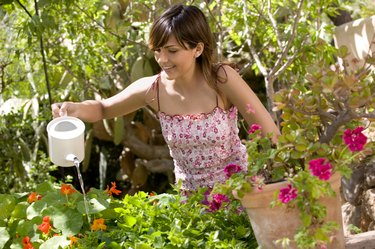 Woman watering plants outdoors