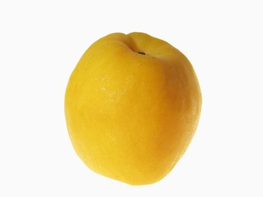 Close-up of an apricot