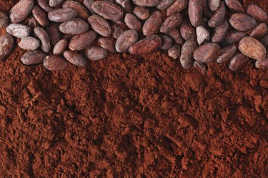 cocoa beans and powder background