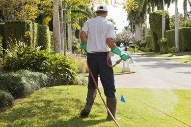 Pest control technician using high pressure spray gun and hose on  lawns