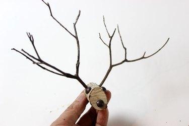 insert antlers