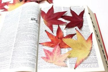 flatten leaves