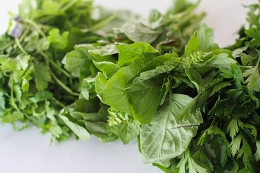 Bunches of parsley, basil, and cilantro.