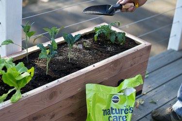 Miracle Gro Organic & Natural Vegetable Fruit & Flower Food