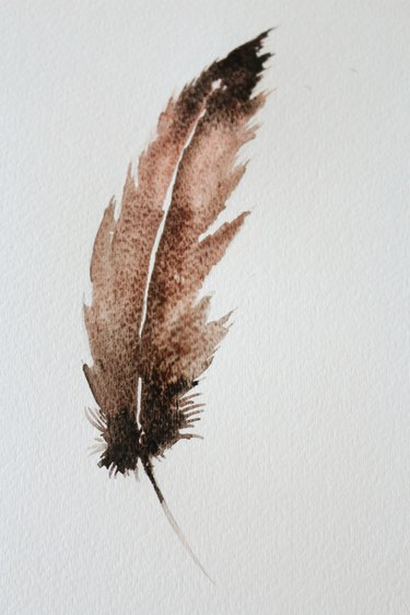 Paint the top of the feather with black.