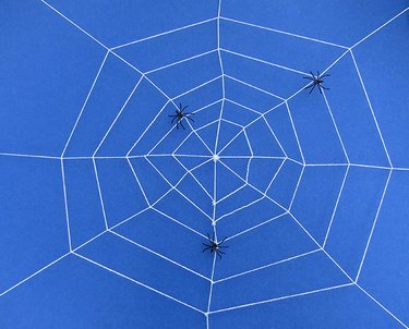 How to make a knotted spider web.