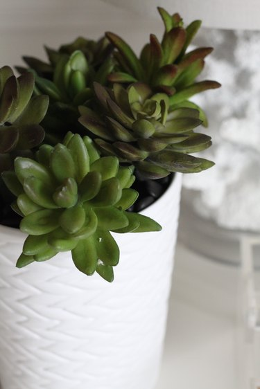 Faux succulent pen planter