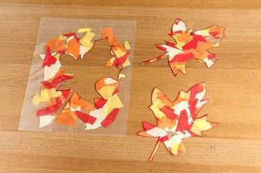 Cut leaves on display