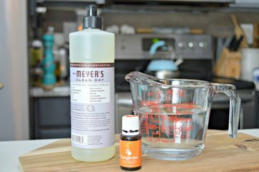 Homemade Oven Cleaner Spray - Ingredients