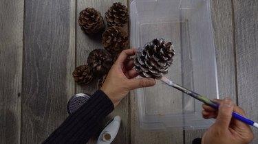 Coating pinecones with glue for DIY cinnamon-scented pinecones.