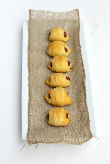 miniature pigs in a blanket