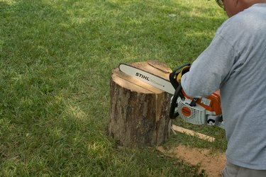 Use your marked line as a guide and cut through the stump.